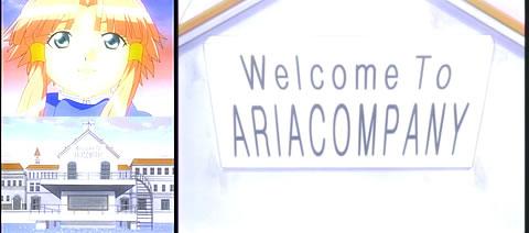 ARIA13-11